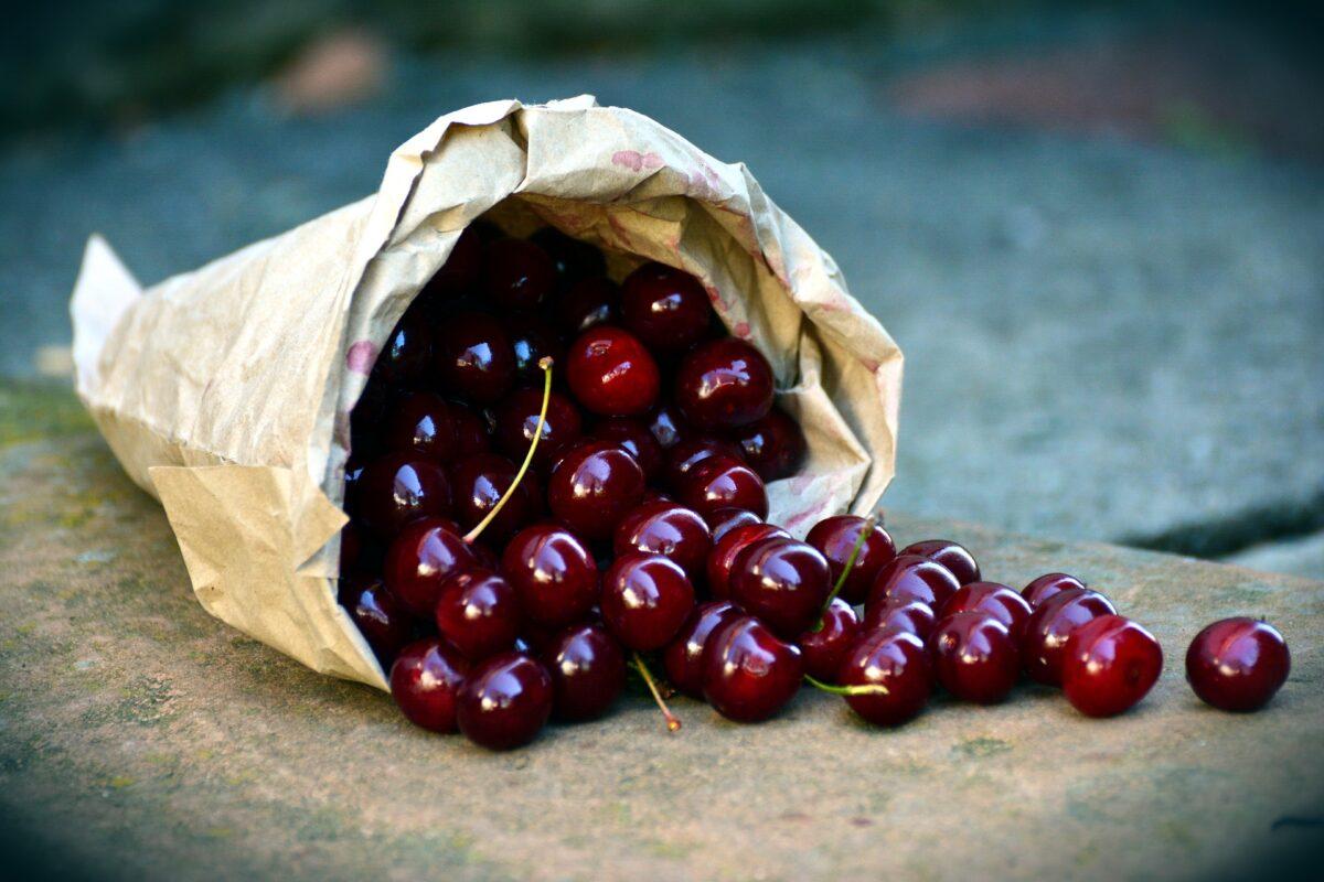 La ciliegia di Marostica IGP